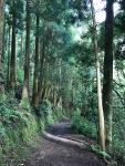 DaronsDaronnes.com_travelwithkids_Azores_SaoMiguel_hike_040